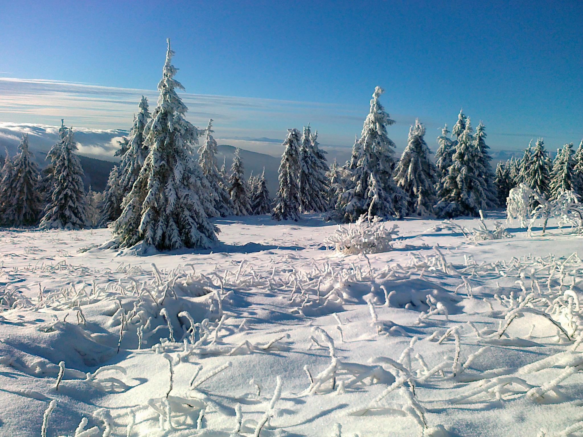 Zima na Kojšovej holi